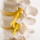 spine physio